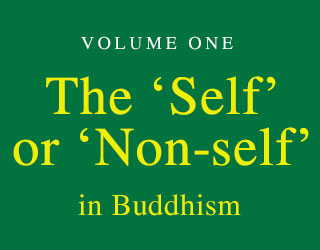 A Treatise on Mind: Volume One