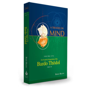 A Treatise on Mind: Volume 5B